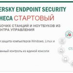 Kaspersky endpoint security что это