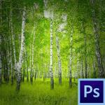 Photoshop как сделать затемнение