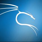 Kali linux light 64 bit