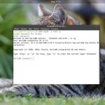 Mysql работа с пользователями