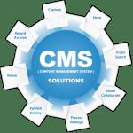 Content management system что это