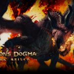 Dragon s dogma дырявые карманы