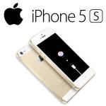 Iphone 5s не прошивается