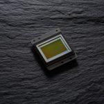 Nikon d500 примеры фото